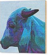 Blue Brahma Wood Print
