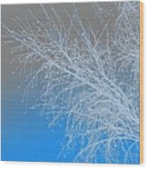 Blue Branches Wood Print