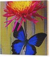 Blue Butterfly On Fire Mum Wood Print