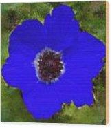 Blue Calanit Magen Wood Print
