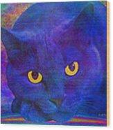 Blue Cat Ponders Wood Print