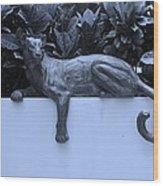 Blue Cat Wood Print by Rob Hans