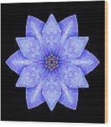Blue Clematis Flower Mandala Wood Print