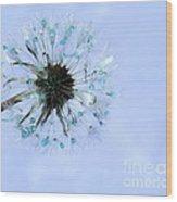 Blue Dandelion Wood Print