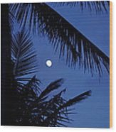 Blue Dawn Moon Wood Print