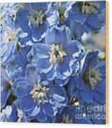 Blue Delphinium 9656 Wood Print