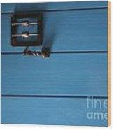 Blue Door Wood Print