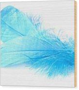 Blue Doubles Wood Print