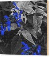 Blue Drippings Wood Print