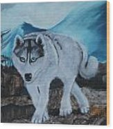 Blue Eyed Husky Wood Print