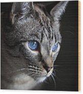 Blue Eyes Wood Print