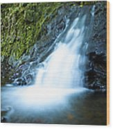 Blue Falls Off The Beaten Path Wood Print