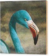 Blue Flamingo Wood Print