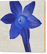 Blue Flower Beige Texture Wood Print