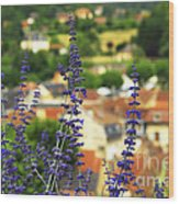 Blue Flowers And Rooftops In Sarlat Wood Print by Elena Elisseeva