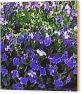 Blue Flowers On Sun Wood Print