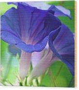 Blue Flutes Wood Print
