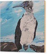 Blue Footed Booby Wood Print