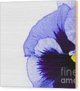 Blue Frost Wood Print
