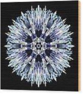 Blue Globe Thistle Flower Mandala Wood Print