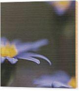 Blue Haze II Wood Print