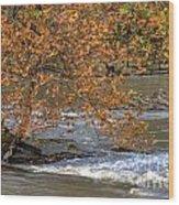 Blue Heron - Peninsula Depot Wood Print
