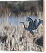 Blue Heron 1 Wood Print by Roger Snyder