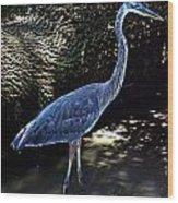 Blue Heron 8 Wood Print