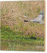 Blue Heron And The Black Bird Wood Print