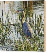 Blue Heron Backside Wood Print