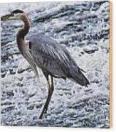 Blue Heron Fishing V3 Wood Print