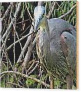 Blue Heron Greeting Wood Print