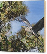 Blue Heron In The Trees Oil Wood Print