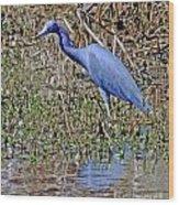 Blue Heron Louisiana Wood Print