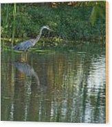 Blue Heron Magic Wood Print