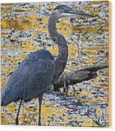 Blue Heron Naturally Wood Print