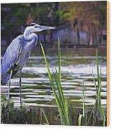 Blue Heron On The Bay Wood Print