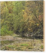 Blue Hole Streambed Wood Print