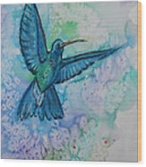 Blue Hummingbird In Flight Wood Print