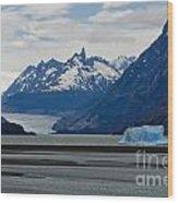 Blue Icebergs On Grey Lake In Patagonia Wood Print