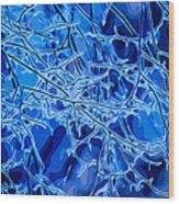 Blue Imbue 2 Wood Print