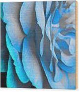 Blue Impatience Wood Print