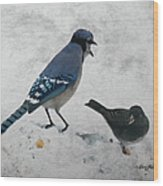Blue Jay And Junco Wood Print
