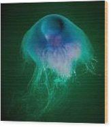 Blue Jelly Series 4 Wood Print