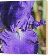 Blue June Wood Print