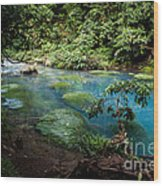 Blue Lagoon Wood Print