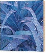 Blue Leaves Wood Print