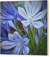 Blue Lilie Wood Print