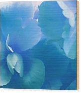 Blue Melody Begonia Floral Wood Print