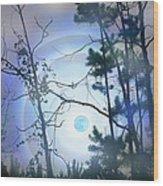 Blue Moonlight Wood Print